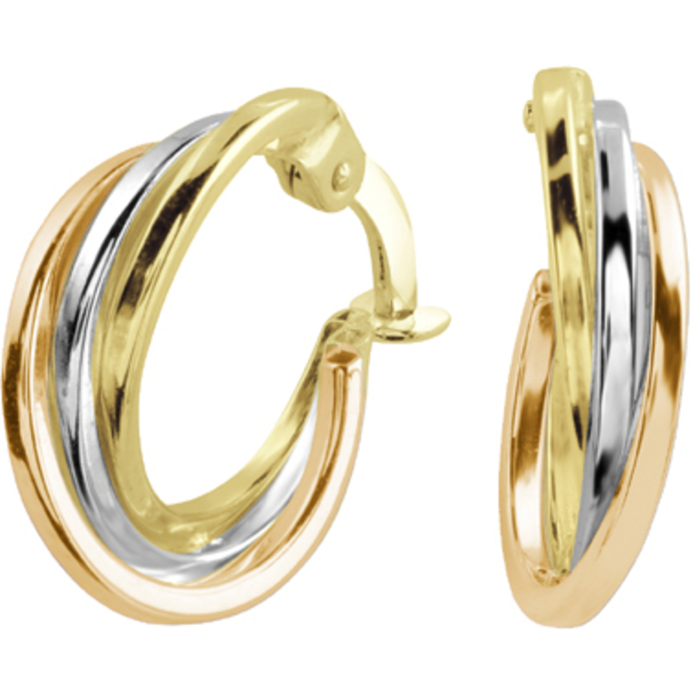 Hoop earrings - in 10K 3 tone Gold (yellow  white and rose)