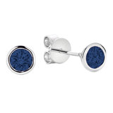 Earrings for woman - 10K white gold & Sapphire