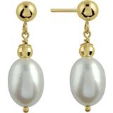 Boucles d`oreilles avec Perles Biwa or jaune 14K