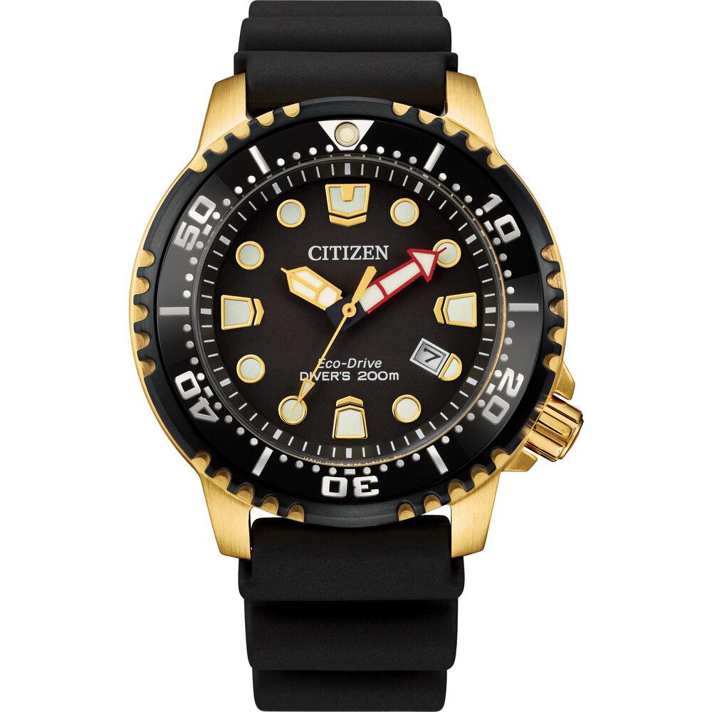 Montre pour homme Professional Diver à cadran noir